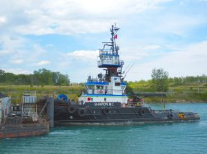 Photo by Will Van Dorp